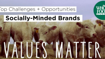 Top Challenges, Opportunities and Trends for Socially Minded Brands