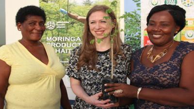 Clinton Foundation, Kuli Kuli Looking to Moringa to Tackle Poverty in Haiti