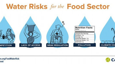 Global Investors Urging Food, Beverage Companies to Better Manage Water Risks