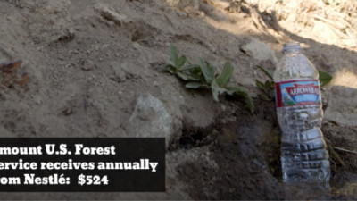 Courage Campaign Suing US Forest Service for Allowing Nestlé to Bottle Water in California