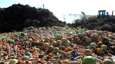 PepsiCo, Unilever, WWF Leading Coalition Pushing for Value Chain Collaboration in Fighting Food Waste