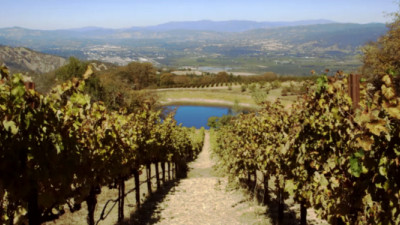 Trending: Fetzer Vineyards, U.S. Department of Labor Celebrate B Corp Certification