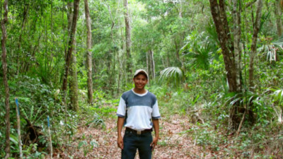 Indigenous Communities May Offer the Most Affordable, Effective Forest Protection