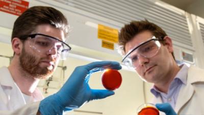Orange Peels + Sulphur = Mercury Remediation?