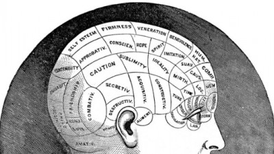 Our Brain on Purpose