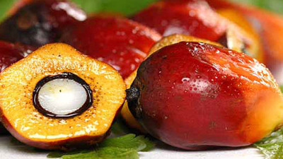 Kellogg Commits to Fully Traceable Palm Oil by End of 2015