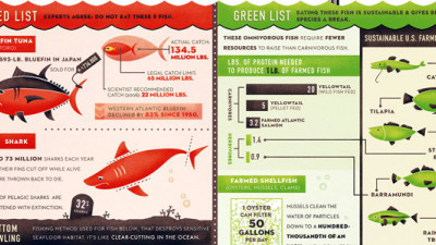 Sustainable Seafood: One Fish, Two Fish, Red Fish, Green Fish