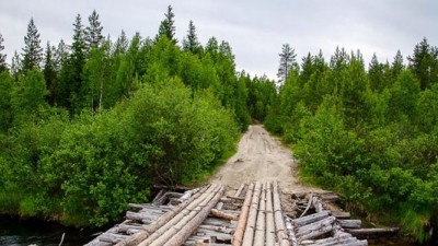 FSC Suspends IKEA's Certification After Discovering Use of Old-Growth Forests in Russia
