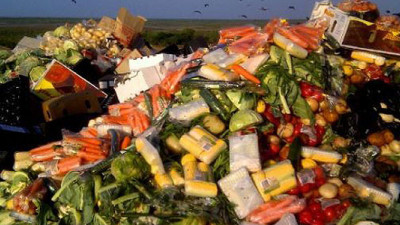 New Feasibility Studies Using Social Innovations to Tackle European Food Waste