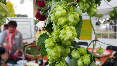 UK Startup Turning Enterprising Beer Lovers Into Urban Farmers