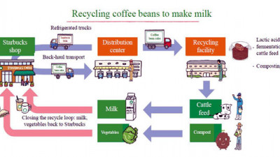 Closed-Loop Upcycling at Its Finest: Starbucks Now Sourcing Milk from Coffee-Fed Cows