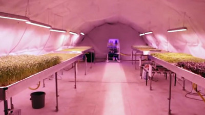 Startup Growing 'Zero Carbon Food' in London Underground Tunnels Has Investors Clamoring