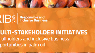 Whitepaper: Don't Leave Smallholders Out of the Palm Oil Debate