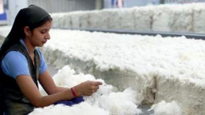 WWF, IKEA Release Better Cotton Initiative Progress Report