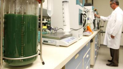 Solazyme and AkzoNobel Expand Algal Oil Partnership