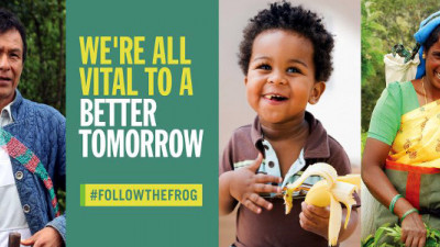 Rainforest Alliance Partners with the Guardian on New 'Follow the Frog' Campaign