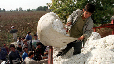 World's Largest Retailers Take Stand Against Forced Labor in Uzbek Cotton Harvesting