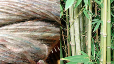 EcoPlanet Bamboo Working with Canopy to Offer Sustainable Alternative to Forest-Fiber Textiles