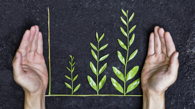 5 Misconceptions About Sustainability Reporting Assurance