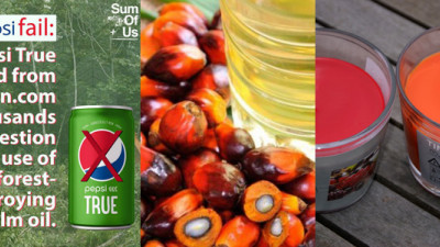 Trending: This Week in Sustainable Palm Oil — Featuring PepsiCo, IKEA & Unilever