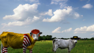 McDonald's Taps Local Partners to Pilot Sustainable Beef Program in New Zealand