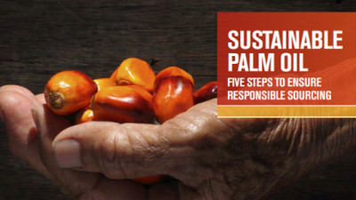 FDF Launches Sustainable Palm Oil Sourcing Guide for Food & Beverage Industry
