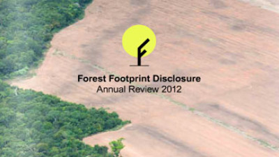 Heinz, Colgate Divulge Forest Footprints, But Many Firms Falling Behind, Report Says
