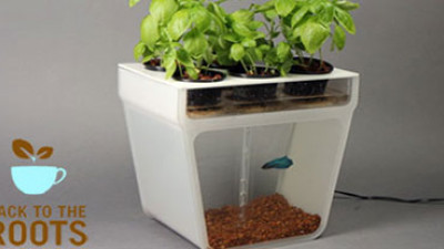 Back to the Roots Growing Food Education, Reducing Waste Thanks to Smart Design