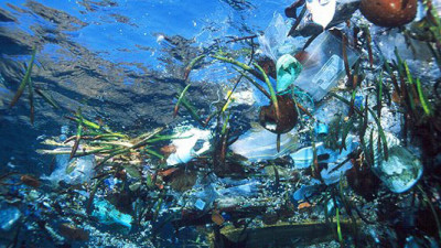 Ecover Developing New Type of Recycled Plastic from Recovered Marine Waste