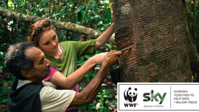 Sky Rainforest Rescue: Engaging Consumers to Purpose While Creating Clear Business Benefits