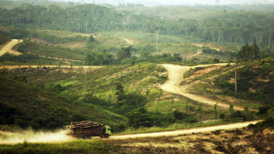 Asia Pulp and Paper Reports Latest on No Deforestation Policy in Third 'Vision 2020' Update