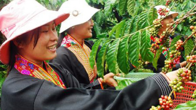 Mondelez International Helping 1,500 Vietnamese Coffee Farmers Become Sustainable Entrepreneurs