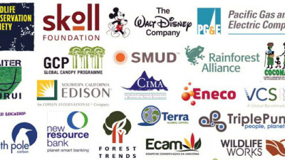 Key Global Stakeholders Express Support for REDD+ Protocol in California's Climate Policy