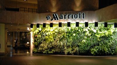 Marriott International Reaches Key Milestone in Greening Its Global Supply Chain