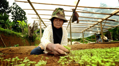 APP, MTG Partner to Turn 1K Women from Forest Communities into Herbal Entrepreneurs
