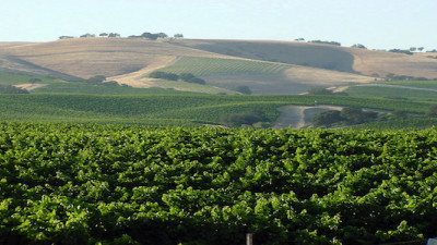 First Stewardship Travel Program in US Launches in CA Wine Country