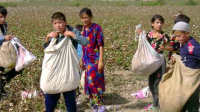 IKEA, M&S, lululemon Join Brands Protesting Forced Child Labor in Uzbek Cotton Fields