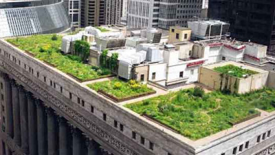 Sustainable Ecosystems: Chicago's Multi-Stakeholder Commitment Boosting Innovation and Entrepreneurship