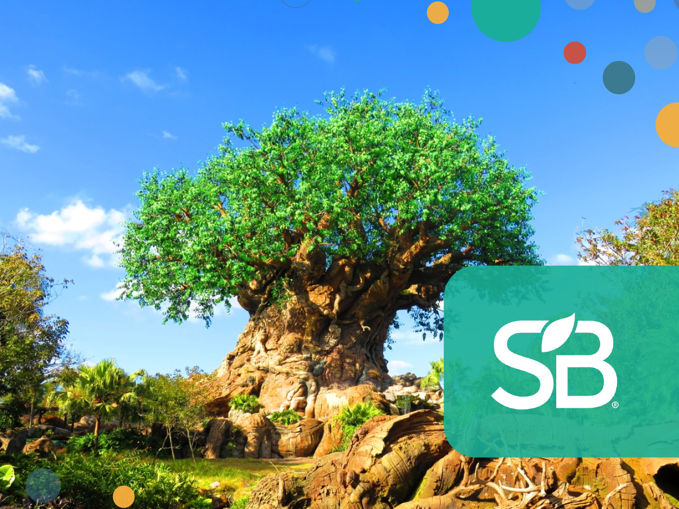 The Disney Conservation Fund Awards $5 Million to Conservation