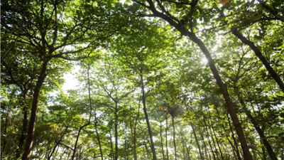 Braskem featured on the BM&FBovespa sustainability index for the 13th year