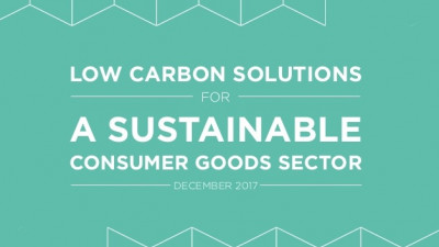 EcoAct & The Consumer Goods Forum Publishes Report on Low-Carbon Solutions