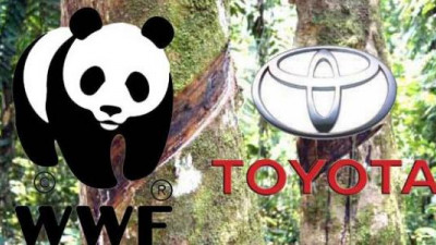 WWF and Toyota Form Global Partnership, Join Forces on Living Asian Forest Project and Climate Change