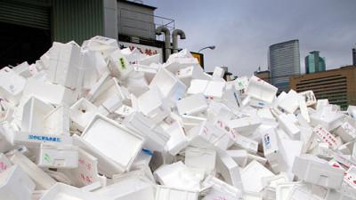 As You Sow Urges Global Brands to Nix Polystyrene Foam Packaging