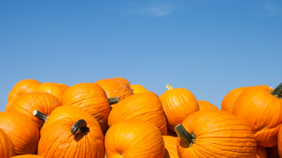 "Hubbub & Unilever Partner To Tackle ""Frightful"" Pumpkin Waste"