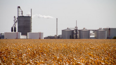 New enzyme cuts chemical use at ethanol plants by more than 70%