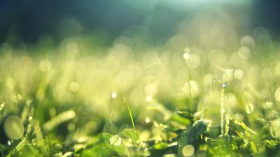 Sustana Group's New Sustainability Strategy Highlights Environmental Stewardship, Sets Measurable Goals