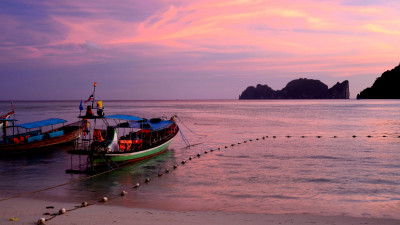 Slavery Risk Tool Allows Businesses to Identify Human Rights Violations in Seafood Supply Chains