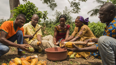 #BusinessCase: Championing Female Role Models Across the Cocoa Value Chain