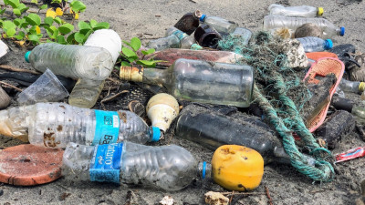 The Circular Economy: Reducing Ocean Plastics at the Source