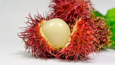 Rambutan Program: BASF Launches Bioactives from Responsible Beauty Program